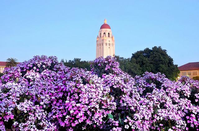 StanfordSpring